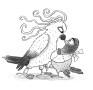 Cockatoo vs Pigeon DEMPSEY -