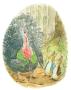 Peter Rabbit's Christmas (Turkey) ELEANOR TAYLOR -