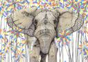 DIECKMANN, Sandra, Elephant -