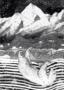 DIECKMANN, Sandra, Polar Bear -