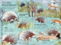 The Big Book of Beast (Porcupines) YUVAL ZOMMER -