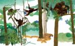 SEKI orangutans -